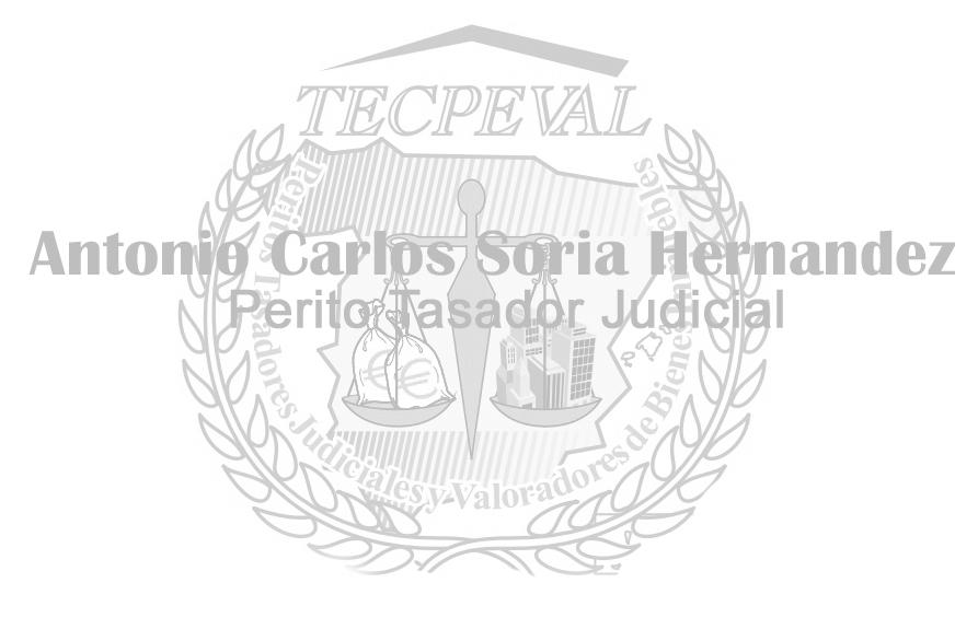 Tasador Judicial